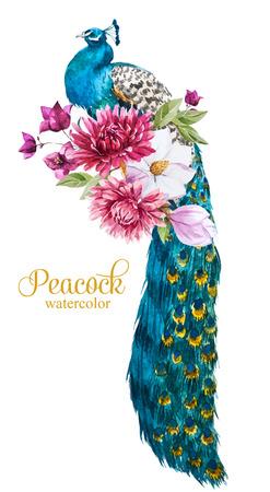 Mooi beeld met mooie aquarel hand getekende pauw met bloemen