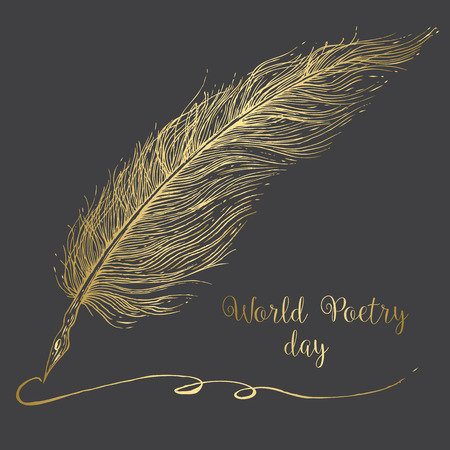 poet: Beautiful vector image with nice graphic hand drawn feathers