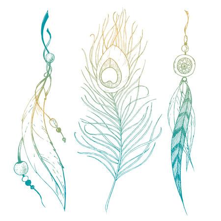 pluma: Imagen hermosa del vector con plumas mano agradable gráfico dibujado