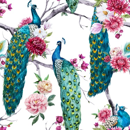 bougainvillea flowers: Beautiful pattern with nice watercolor peacock and flowers