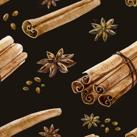 cinnamon: Beautiful pattern with hand drawn watercolor spices cinnamon and anise