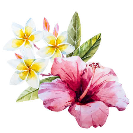 flores exoticas: Beautiful image with nice watercolor hand drawn hibiscus flower