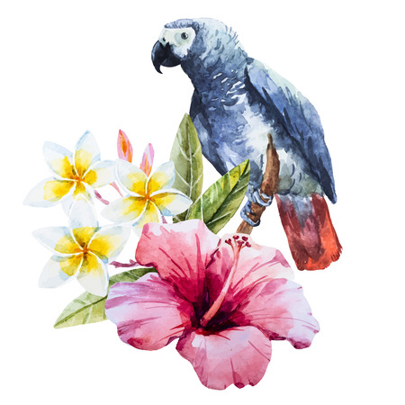 Beautiful image with nice watercolor hand drawn hibiscus flower with parrot