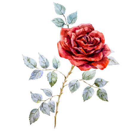 Beautiful image with nice hand drawn watercolor red rose