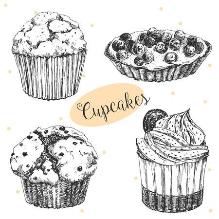 magdalenas: Hermosa imagen con pasteles sabrosos dibujados a mano