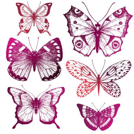 Beautiful image with six nice hand drawn butterflies