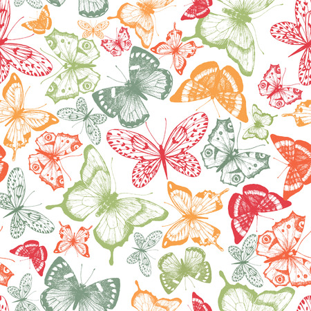 insect flies: Beautiful pattern with nice hand drawn butterflies