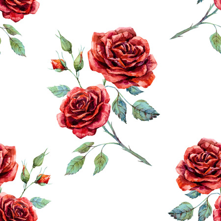 Beautiful pattern with nice hand drawn watercolor roses Banco de Imagens - 55450071