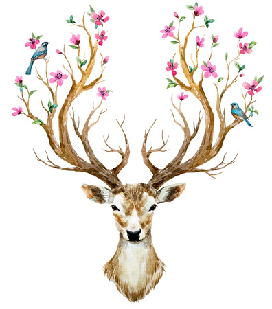 Beautiful image with nice watercolor hand drawn deer Banco de Imagens - 55450070