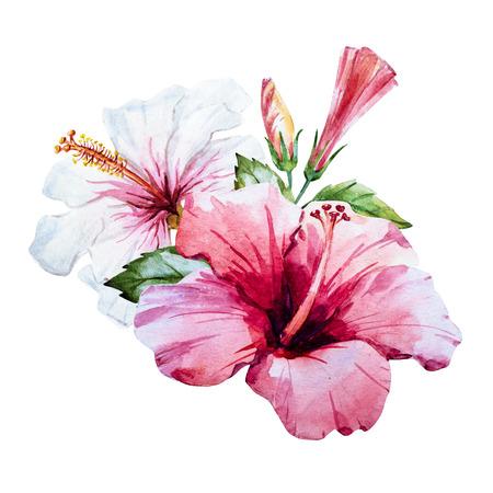 좋은 수채화 손으로 그린 히비스커스 꽃과 함께 아름 다운 이미지