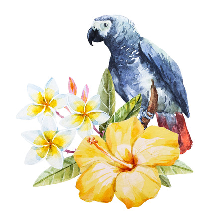 red hibiscus flower: Beautiful image with nice watercolor hand drawn hibiscus flower with parrot