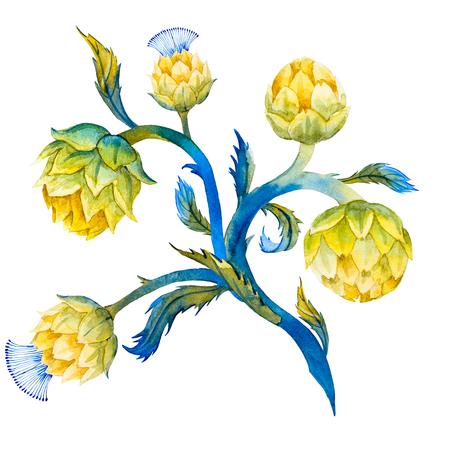 yellow green: Beautiful image with nice watercolor artichoke flower Stock Photo