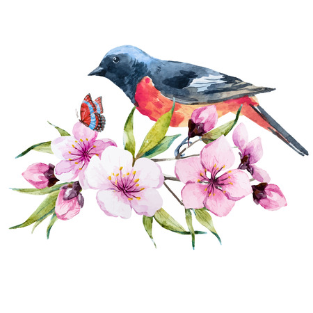 cherries isolated: Beautiful image with nice watercolor composition with bird