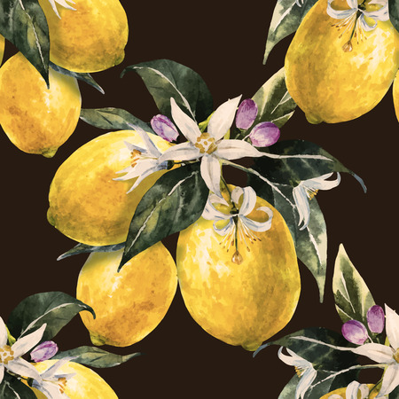 botanical illustration: Beautiful pattern with nice hand drawn watercolor lemons Illustration
