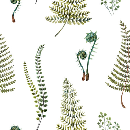 fern leaf: Beautiful pattern with nice watercolor fern leaves