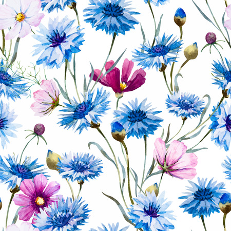 wildflowers: Beautiful pattern con fiordalisi tratte bella mano acquerello