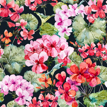 geranium: Beautiful pattern with nice hand drawn watercolor geranium flowers