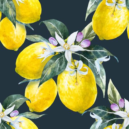 citrus tree: Beautiful pattern with nice hand drawn watercolor lemons Illustration