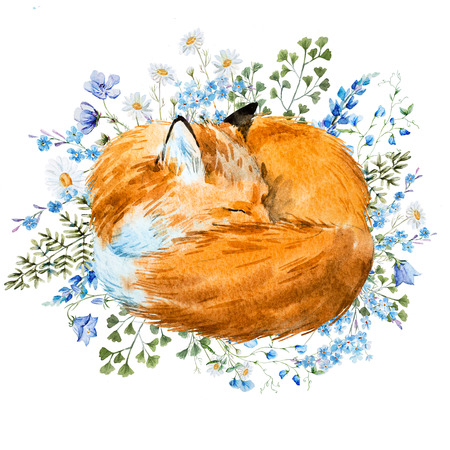 set going: Beautiful image with nice watercolor hand drawn sleeping fox