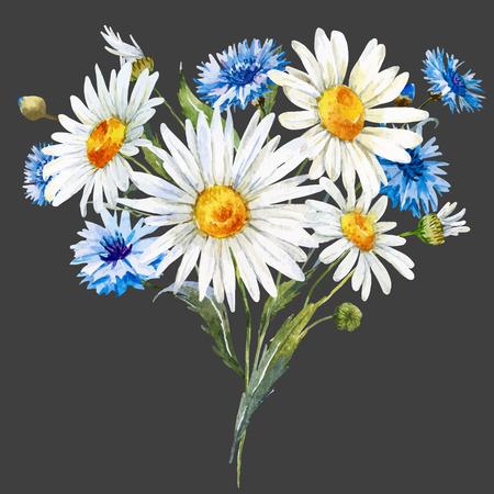 fiordaliso: Bella composizione con acquerello fiori selvatici