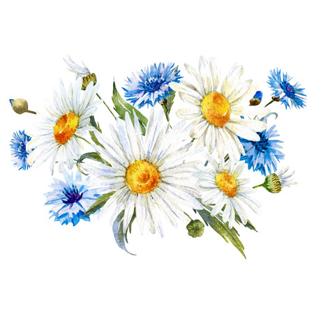 Composición hermosa con flores silvestres dibujado a mano acuarela Foto de archivo - 58583994