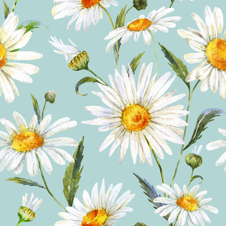 daisies: Beautiful pattern with nice watercolor daisy flowers