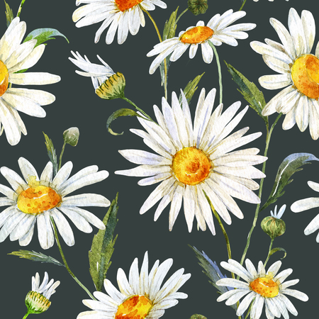 Mooi patroon met mooie aquarel madeliefjebloemen Stockfoto