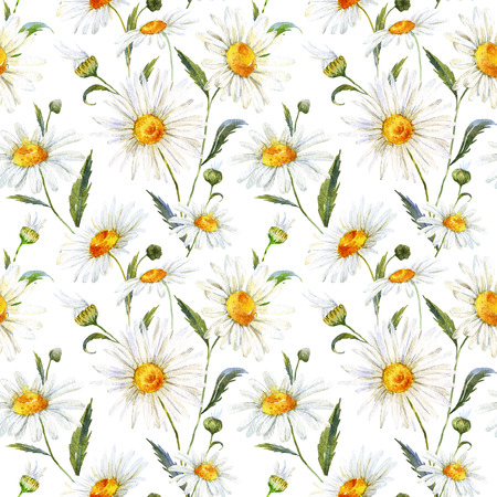 Beautiful pattern with nice watercolor daisy flowers