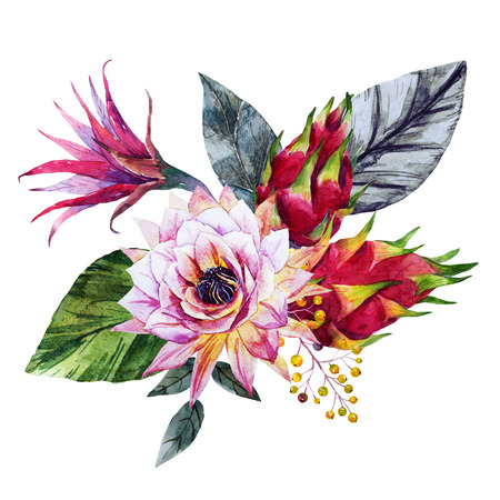 exotic flowers: Beautiful composition with nice watercolor tropical flowers