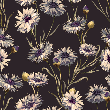 seamless floral: Beautiful pattern with nice watercolor hand drawn cornflowers