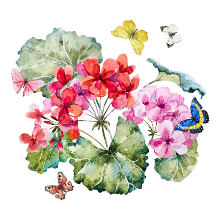 famous painting: Beautiful image with nice hand drawn watercolor geranium flowers and butterflies
