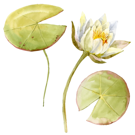 Beautiful image with nice watercolor lotus flowers