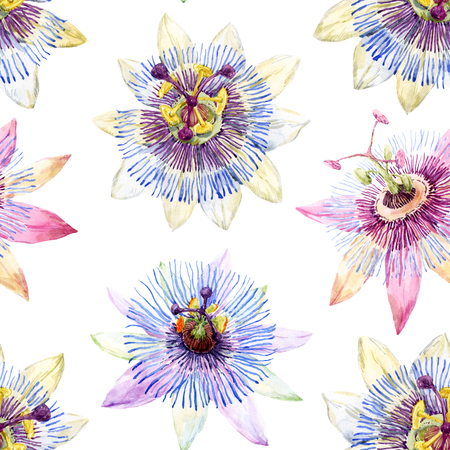 botanical illustration: Beautiful pattern with nice watercolor passion flowers Stock Photo