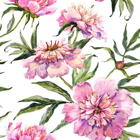 china rose: Beautiful pattern with nice watercolor peony flowers
