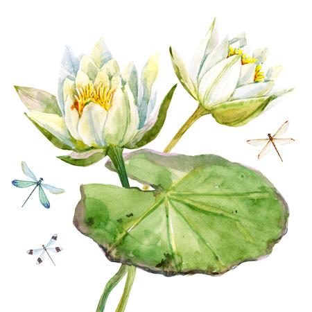 Beautiful image with nice watercolor lotus flowers Reklamní fotografie - 60960826