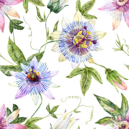 purple flowers: Beautiful pattern with nice watercolor passion flowers Illustration