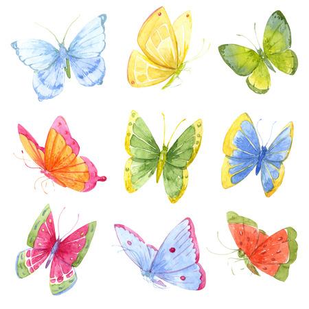 papillon: Belle image avec de nombreux papillons colorés à l'aquarelle Banque d'images