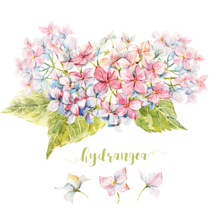 Beautiful image with nice watercolor hydrangea composition