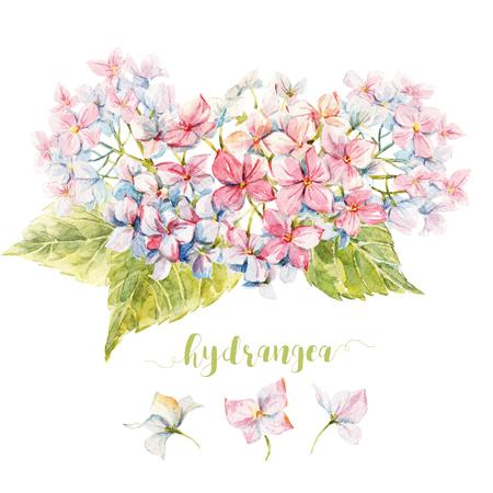 flores moradas: Bella imagen con la composición de hortensia bonita acuarela