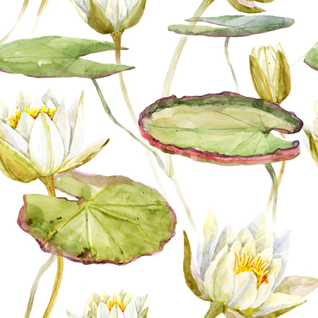 illustration and painting: Beautiful pattern with nice watercolor lotus flowers