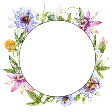 botanical garden: Beautiful wreath with nice watercolor passionflowers and fruits