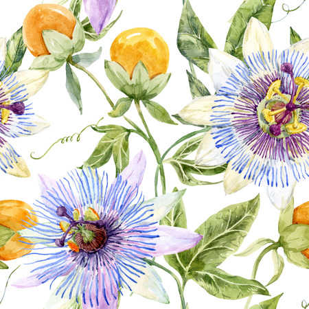 passion flowers: Beautiful pattern with nice watercolor passion flowers Stock Photo