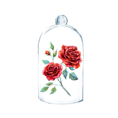 Beautiful watercolor illustration with red rose in a glass case Stock Illustratie