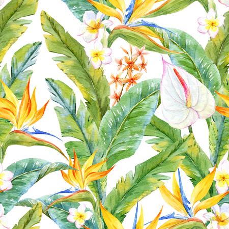 Bello modelo con las hojas y las flores tropicales acuarela Foto de archivo - 63728233