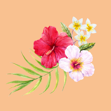 anthurium: Beautiful watercolor tropical composition with hibiscus flowers Illustration