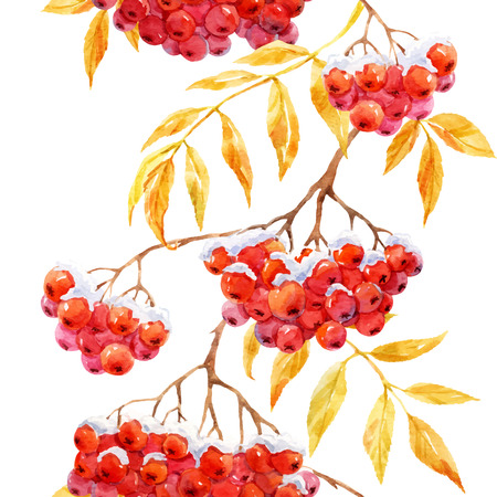 drawing trees: Beautiful pattern with watercolor rowan mountain ash berries