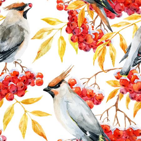 mountain ash: Beautiful pattern with nice watercolor waxwing bird and mountain ash