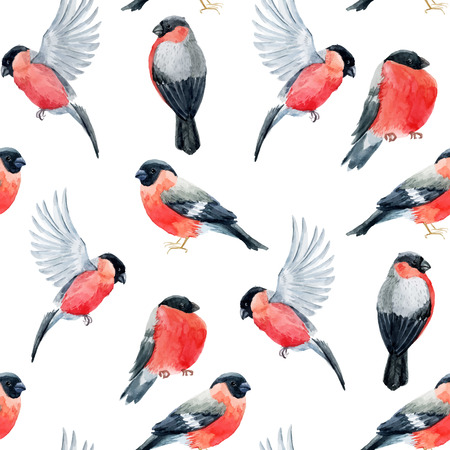 bullfinch: Beautiful pattern with nice watercolor bullfinch birds