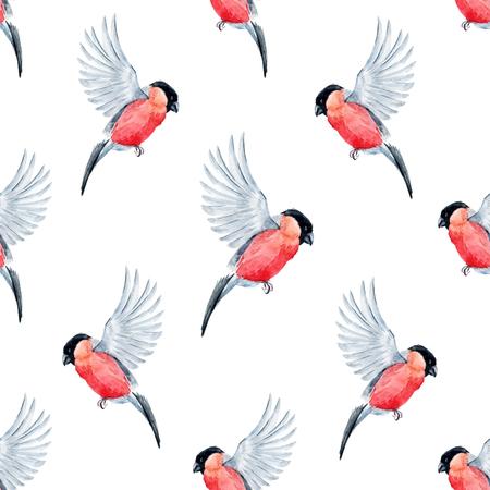 bullfinch: Beautiful pattern with nice watercolor bullfinch birds