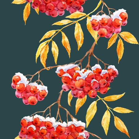 winter snow: Beautiful pattern with watercolor rowan mountain ash berries